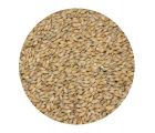Солод  ячменный  Pale ale EBC 4-6 (Курский солод)